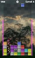 Screenshot of Drop Block