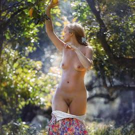 In the garden. by Dmitry Laudin - Nudes & Boudoir Artistic Nude ( nude, woman, garden, lemon )