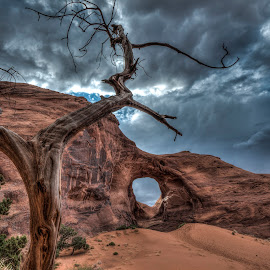 Ear of the Wind by Tina Benjamin - Landscapes Deserts ( navajo, monument valley, desert, monsoon, hdr, nikon d800 )