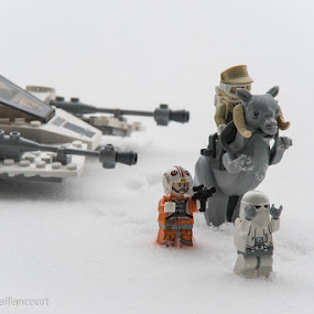 Meanwhile on Hoth... by Stéphane Vaillancourt - Artistic Objects Toys