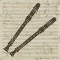 Flute Duets icon