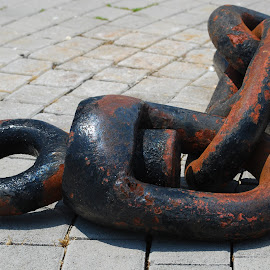 chain by Dijana Zekan - Novices Only Objects & Still Life ( ancora )