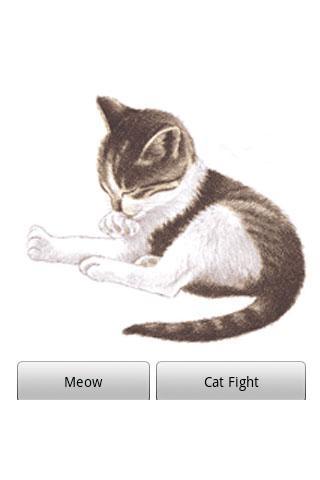 娛樂必備APP下載|Pet Me Cat 好玩app不花錢|綠色工廠好玩App