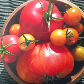 Heritage Bounty by Tonya Levy - Nature Up Close Gardens & Produce