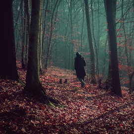 Spooky Woods by Eldin Mahmutovic - Landscapes Forests ( mood, forest, woods, rain, roadway, mist, river )