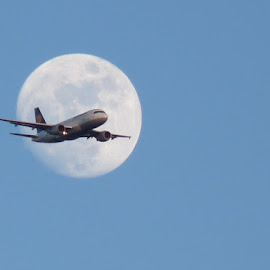 Gonna fly you to the moon and back... by Steve Cooke - Transportation Airplanes