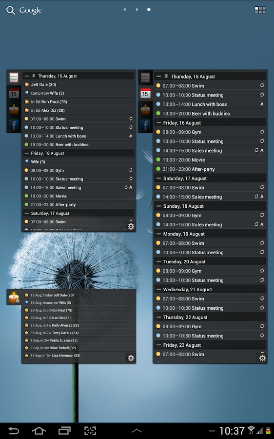 All-in-One Agenda widget Screenshot 11