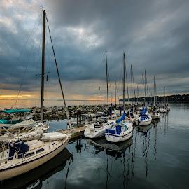 Sailboats by Jacob Helmhold - Transportation Boats ( water, sailboats, sailing, sunset, boats )