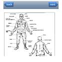 Military Hand Combat