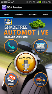 Shadetree Auto - screenshot