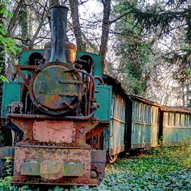 Made in Croatia 1952. by Željko Salai - Transportation Trains