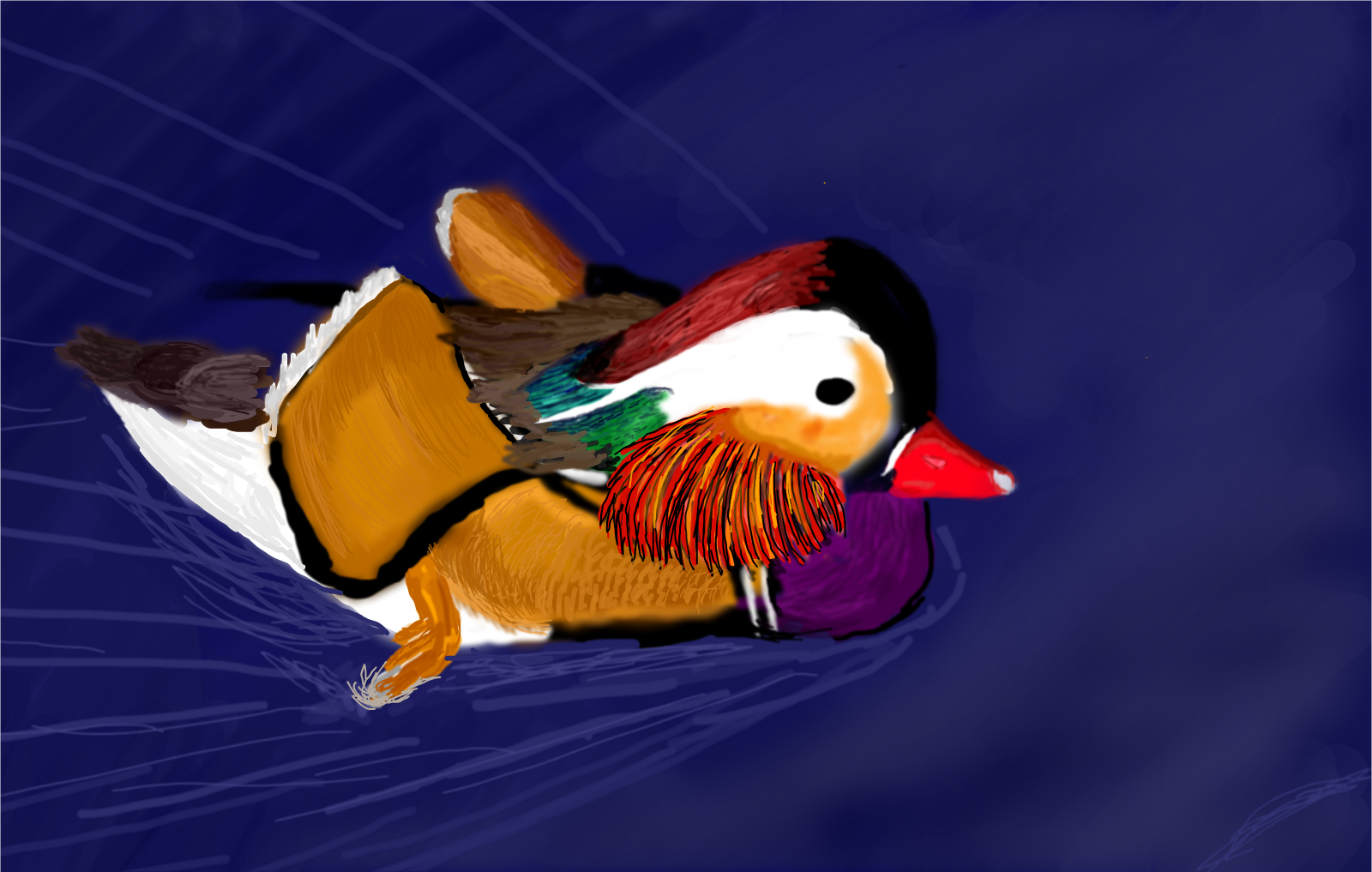 Mandarin Duck for  Aya