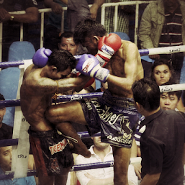 Muay Thai 2 by Bim Bom - Sports & Fitness Boxing ( ring, muay thai, thailand, combat, boxing, martial art, fighter, kickboxing )