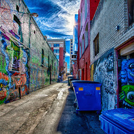 Freak Alley Gallery by Rachaelle Larsen - City,  Street & Park  Street Scenes ( idaho, freak alley gallery, downtown boise, alley, graffiti art )