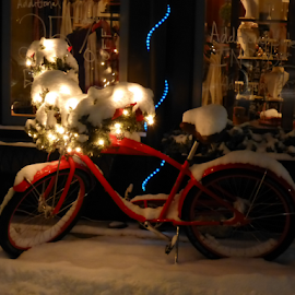 Snow Covered Bicycle by Heather Diamond Ryan - Transportation Bicycles ( winter, bike, christmas lights, snow, bicycle )