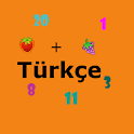 Sayi ve matematik Turkce icon