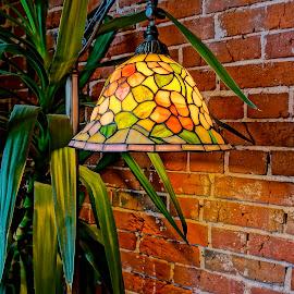 Lamplight by Barbara Brock - Artistic Objects Glass ( floor lamp, greenery, red brick wall, tiffany lamp )