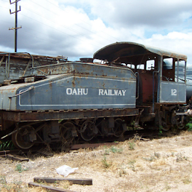 Bygone days by Raymond Earl Eckert - Transportation Trains ( steam; train; locomotive; hawaii; engine,  )