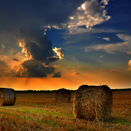 Straw at sunset by Manuela Dedić - Landscapes Prairies, Meadows & Fields ( clouds, orange, sky, straw, sunset,  )