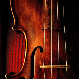 Violin... by Felipe Lima - Artistic Objects Musical Instruments ( violin, lovely, beauty, light )