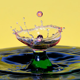 Wine glas by Fred Øie - Abstract Water Drops & Splashes ( abstract )