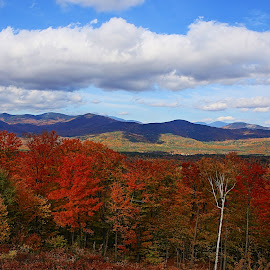 New Hampshire's White Mountains by Ken Miller - Landscapes Mountains & Hills ( hills, mountains, fall colors, autumn, white mountains, landscape, new hampshire, fall, color, colorful, nature,  )
