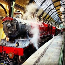Hogwarts Express by Tori Hitz - City,  Street & Park  Amusement Parks ( instagram, harry potter world, summer, hogwarts express, harry potter )