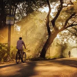 Golden hour by Rupam Chakraborty - Landscapes Travel ( landcapes, nature, highways, autumn, weather )
