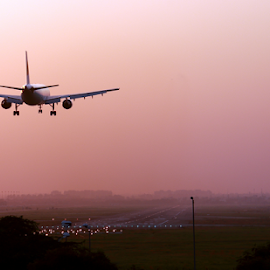Getting back on Earth by Sridhar Balasubramanian - Transportation Airplanes ( 737, plane, landing, touch down, india, airbus, delhi )
