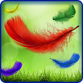 Free Feather Live Wallpaper HD APK for Windows 8