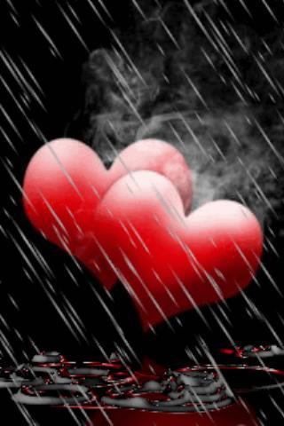 Rain On Red Hearts Live Wallpa