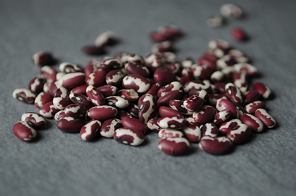 Rio Zape Beans with Toasted Chile Sauce