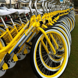by Gary Latone - Transportation Bicycles (  )
