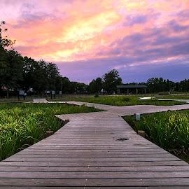 mizumoto park by Kadek Lana - Landscapes Travel ( sunset, tokyo, travel, landscape, kadek wismalana )