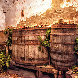 Cellar by Antonello Madau - Food & Drink Alcohol & Drinks