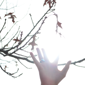 Reaching Into The Sun by Selah Madland - People Body Parts ( hand, ring, reaching, white, sun )
