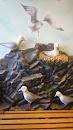Seagulls Nest