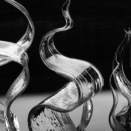 From Fluent Steps by Kelly Clark - Artistic Objects Glass ( abstract, canon eos 60d, black and white, art, artistic, glass, tacoma, canon 18-135mm )