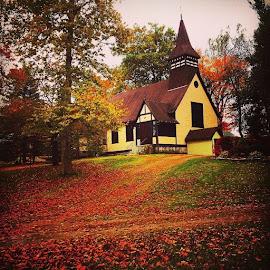 Forever Autumn 2 by Nancy Senchak - Instagram & Mobile iPhone