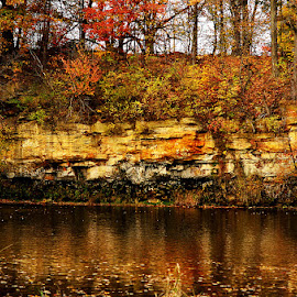 View of the River Bank by Kourtney Monroe - Landscapes Caves & Formations ( fall, color, colorful, nature )