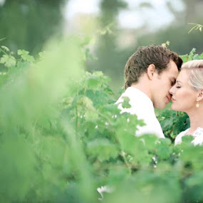 Kiss  by Albert Bredenhann - Wedding Bride & Groom