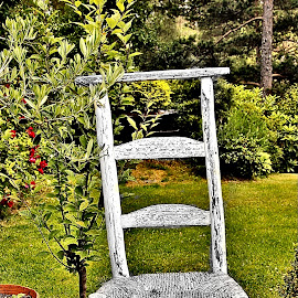 French chair by Jose Figueiredo - Artistic Objects Furniture ( chair, old, furniture )