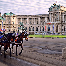 Haldenplatz - Vienna by Tihomir Beller - City,  Street & Park  Historic Districts