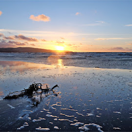 Beach sunset by Matt Fraser - Landscapes Beaches ( sand, sea, ayr, beach )