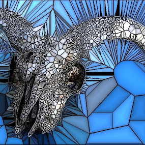 Ram Skull by Roxanne Dean - Abstract Patterns ( sockets, skull, horns, ram, bones,  )