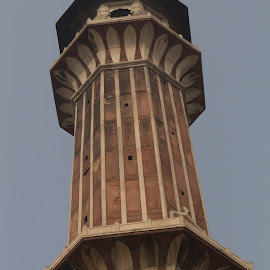 by Janet Marsh - Buildings & Architecture Statues & Monuments ( indiapart1, qutab minar,  )