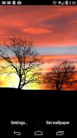 Screenshot of Silhouette Free Live Wallpaper