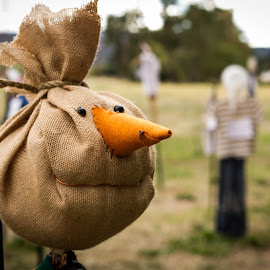 Scarecrow by Antal Ullmann - Artistic Objects Other Objects ( farm, burlap, scarecrow, crow, scare )