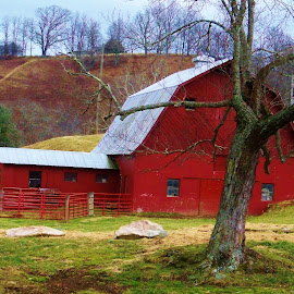 Red Barn by Delores Mills - Buildings & Architecture Other Exteriors