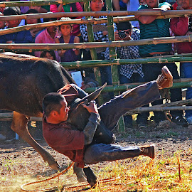 break dance by Leo Angelo Ignacio - Sports & Fitness Rodeo/Bull Riding (  )